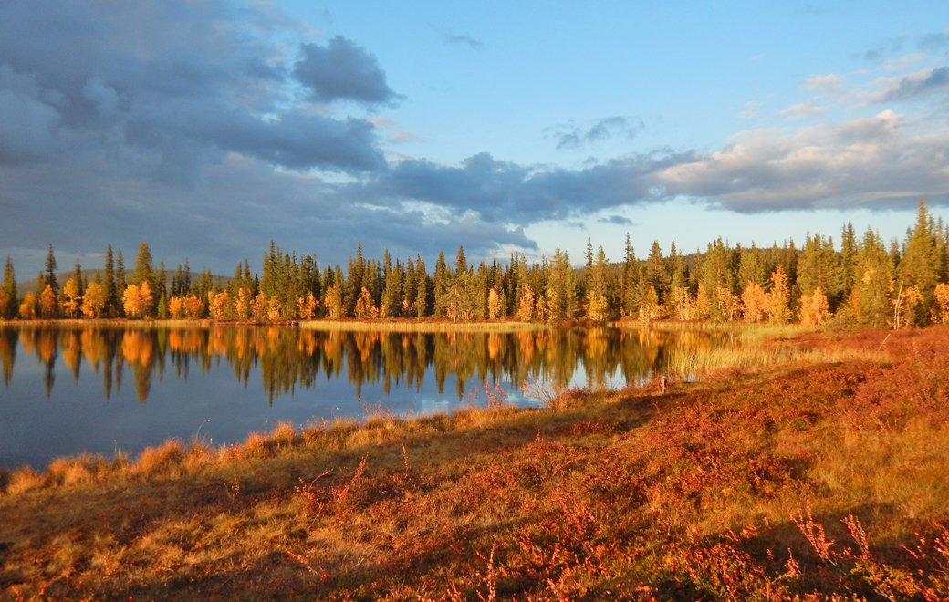 Lappland Herbst See 1040 x 660